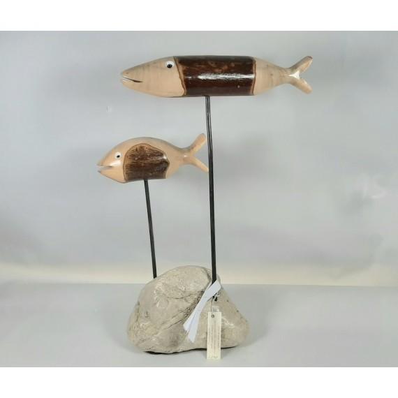 Ocellaris -Pesce -